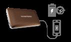 Портативная акустика Harman/Kardon Esquire Mini Brown 8