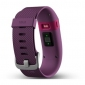 Фитнес-трекер Fitbit Charge HR Small Plum (FBHRPLS) 0