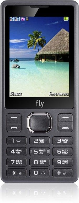 Купить Мобильный телефон Fly FF282 Black