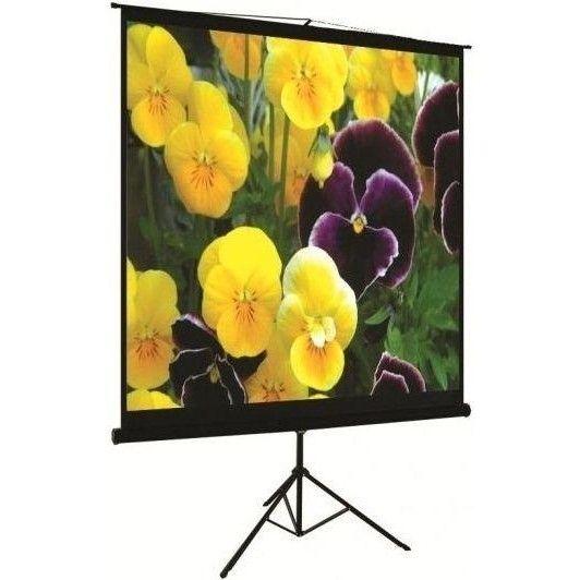 Купить Проекционный напольный экран Logan PRT11