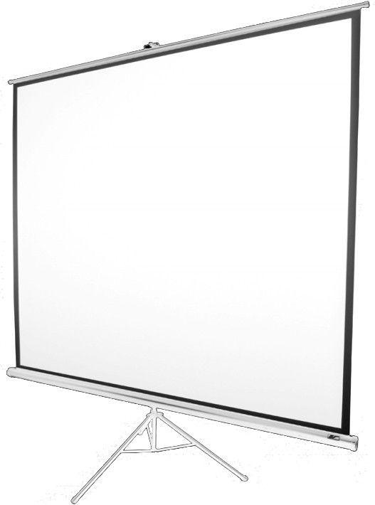Купить Проекционный экран Elite Screens (T119NWS1) White Case