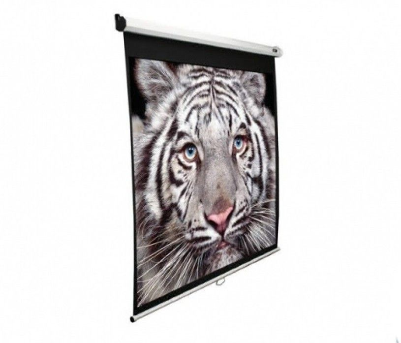 Купить Проекционный экран Elite Screens (M128NWX) White case