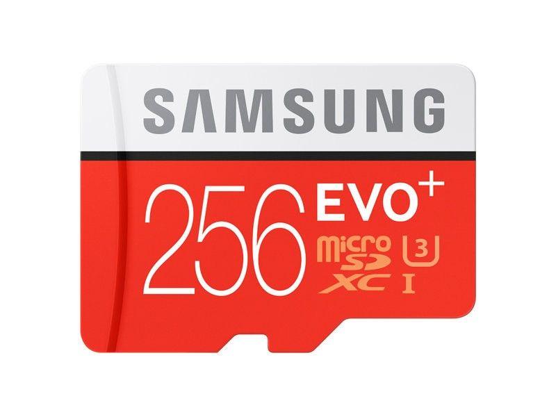 Купить Карта памяти Samsung microSDXC 256GB EVO Plus UHS-I Class 10 (MB-MC256DA/RU)