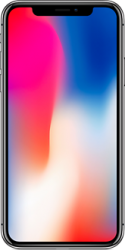 Смартфон Apple iPhone X 64GB (MQAC2) Space Gray